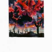 #15 Saguaro National Park