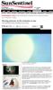 The Sun Sentinel